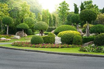 Commercial Landscape architecture in Albuquerque NM Area