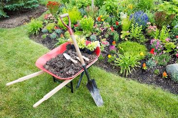 Residential New Mexico Landscaping Ideas & Lawn Care